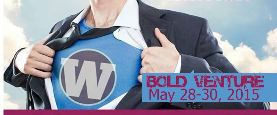 Website Slide - Bold Venture